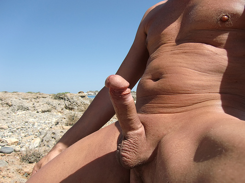 Nudist beach erection